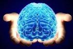 Ученые установили, что память мужчин хуже памяти женщин
