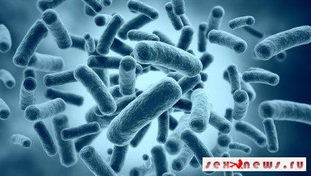 Против найденных в британской реке бактерий антибиотики оказались бессильны