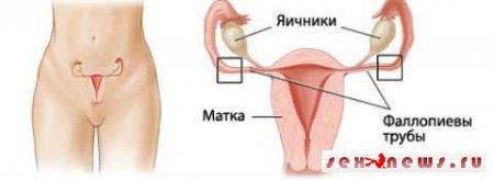 Врачи настоятельно рекомендовали женщинам удалить маточные трубы