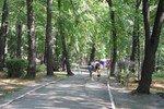 В Ростове поймали извращенца, орудовавшего в роще на Можайской