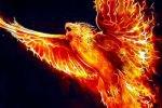 Птица Феникс — символ вечной жизни и совершенства