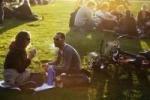 В парках Голландии разрешено заниматься сексом