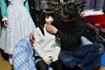 В Японии большой спрос на резиновых женщин по вызову
