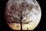 Лунный календарь любви и секса