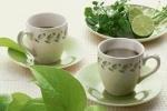 Зеленый чай на работе грозит болезнями почек