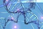 Роль богов судьбы играют гены