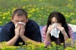 Аллергики чаще других испытывают проблемы в сексе