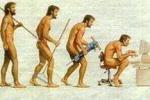 Эволюция уменьшила мужское достоинство