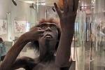 Ученые рассказали о личной жизни древних мужчин