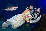 Новинка года: Свадьба в аквариуме