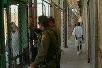 Мужчина получил год тюрьмы за изнасилование резиновой тыквы