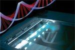 Ребенок из 3-х ДНК - миф или реальность будущего?